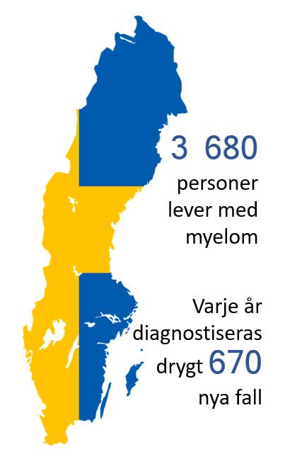 Siluett av Sverige i gult och blått med statistikuppgifter beträffande myelom.